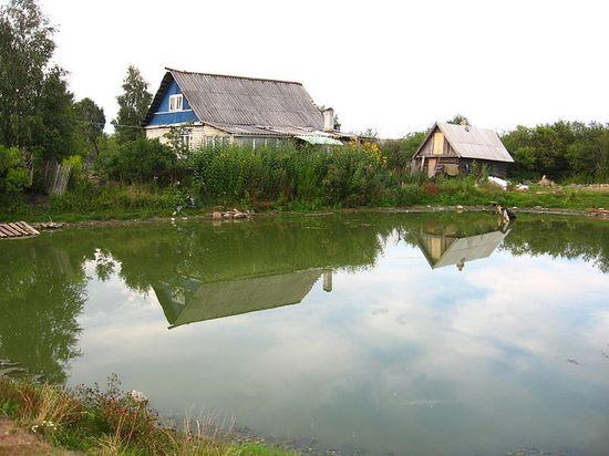 Пруд в деревне