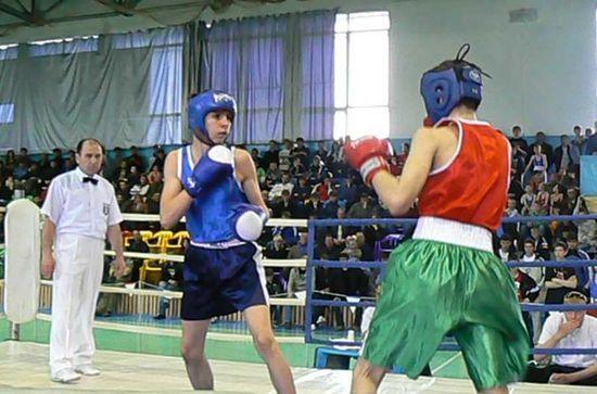 Всероссийский турнир по боксу памяти А.А. Улесова