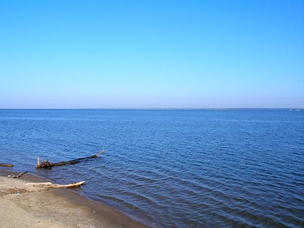 картинки реки обь: